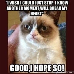 "Tard the Grumpy Cat - ""I wish i could just stop  I know another moment will break my heart"" GOOD,I HOPE SO!"