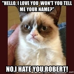 "Tard the Grumpy Cat - ""Hello, I love you  Won't you tell me your name?"" NO,I HATE YOU,ROBERT!"