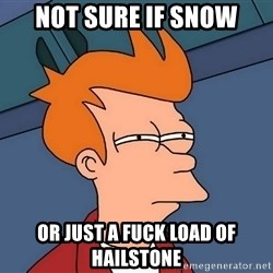 Futurama Fry - not sure if snow or just a fuck load of hailstone