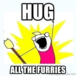 All the things - hug all the furries