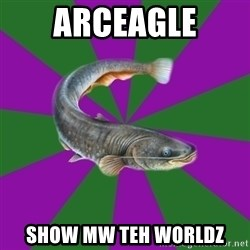 Judgemental Catfish - ARCEAGLE SHOW MW TEH WORLDZ