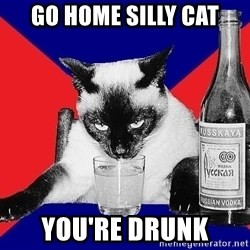 Alco-cat - Go home silly cat You're drunk
