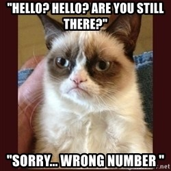 "Tard the Grumpy Cat - ""Hello? Hello? Are you still there?"" ""Sorry... Wrong number """
