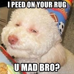 Troll dog - I PEED ON YOUR RUG U MAD BRO?