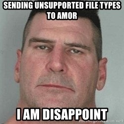 i am disappoint - Sending unsupported file types to Amor I am Disappoint