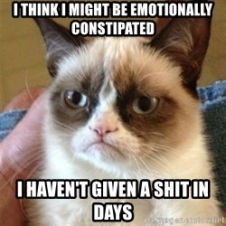 Grumpy Cat  - I think i might be emotionally constipated i haven't given a shit in days
