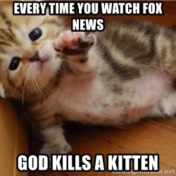 fallen kitten - Every time you watch fox news god kills a kitten