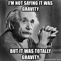 Albert Einstein - I'M NOT SAYING IT WAS GRAVITY BUT IT WAS TOTALLY GRAVITY