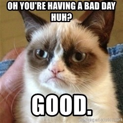 Grumpy Cat  - Oh you're having a bad day huh? good.