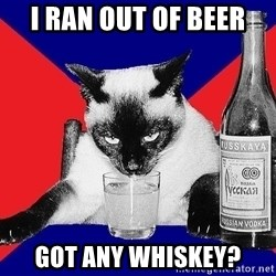 Alco-cat - I RAN OUT OF BEER GOT ANY WHISKEY?