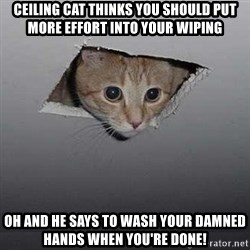Ceiling cat - Ceiling cat thinks you should put more effort into your wiping oh and he says to wash your damned hands when you're done!