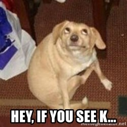 Oh You Dog -  Hey, if you see K...