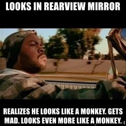 Ice Cube- Today was a Good day - looks in rearview mirror realizes he looks like a monkey. gets mad. looks even more like a monkey.