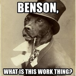 Old Money Dog - Benson, what is this work thing?