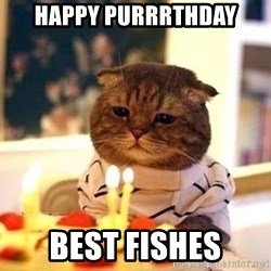 Birthday Cat - Happy Purrrthday Best fishes