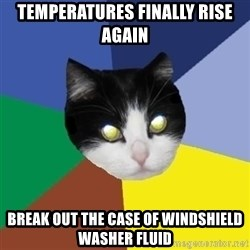 Winnipeg Cat - Temperatures finally rise again break out the case of Windshield washer fluid