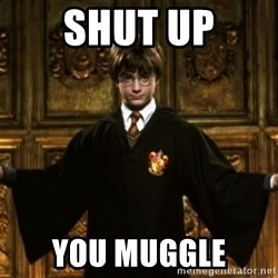 Harry Potter Come At Me Bro - Shut uP yOU mUGGLE