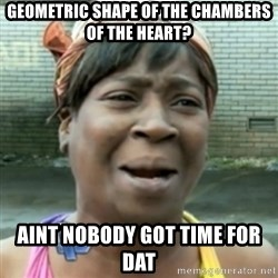aint nobody got time fo dat - Geometric shape of the chambers of the heart? Aint nobody got time for dat