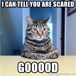 Chris Hansen Cat - i can tell you are scared gooood