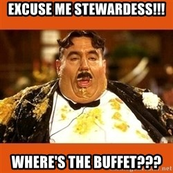 Fat Guy - EXCUSE ME STEWARDESS!!! WHERE'S THE BUFFET???