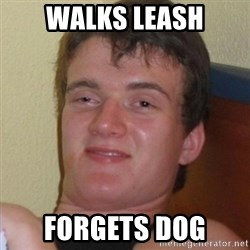 Really highguy - walks leash forgets dog