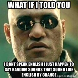What if I told you / Matrix Morpheus - WHat if I told you I dont speak english I just happen to say random sounds that sound like english by chance