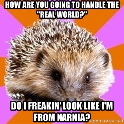 "Homeschooled Hedgehog - How are you going to handle the ""real world?"" Do i freakin' look like I'm from narnia?"