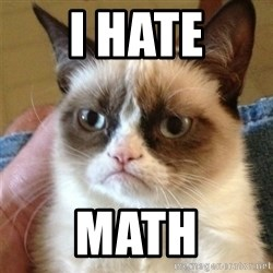 Grumpy Cat  - I hate math