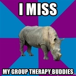 Recovery Rhino - I miss my group therapy buddies