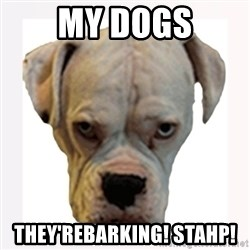 stahp guise - MY dogs THey'reBarking! STAHP!