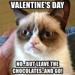 Grumpy Cat  - valentine's day no...but leave the chocolates..and go!