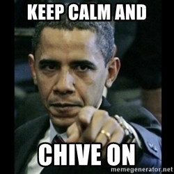 obama pointing - KEEP CALM AND CHIVE ON