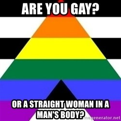 Bad Straight Ally - are you gay? or a straight woman in a man's body?