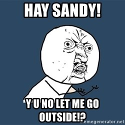 Y U No - HAY SANDY! Y U NO LET ME GO OUTSIDE!?