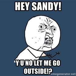 Y U No - HEY SANDY! Y U NO LET ME GO OUTSIDE!?