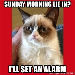 No cat - sunday morning lie in? I'll set an alarm