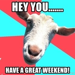 Oblivious Activist Goat - HEY YOU....... HAVE A GREAT WEEKEND!