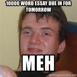 Really Stoned Guy - 10000 word essay due in for tomorrow meh