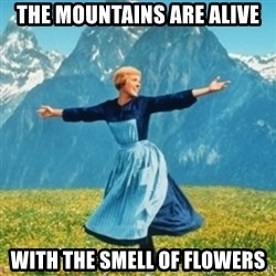 Sound Of Music Lady - The mountains are alive with the smell of flowers
