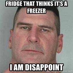 i am disappoint - Fridge that thinks it's a freezer I am disappoint