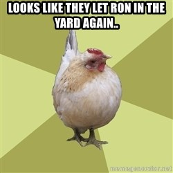 Uneducatedchicken - LOOKS LIKE THEY LET RON IN THE YARD AGAIN..