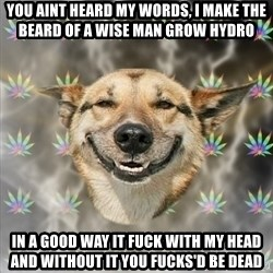Stoner Dog - you aint heard my words, i make the beard of a wise man grow hydro in a good way it fuck with my head and without it you fucks'd be dead
