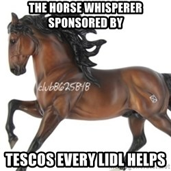 Typical horse model collector - THE HORSE WHISPERER SPONSORED BY TESCOS EVERY LIDL HELPS