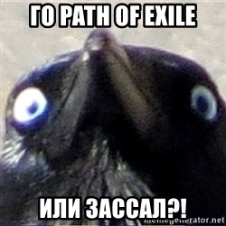 insanity crow - ГО path of exile или зассал?!