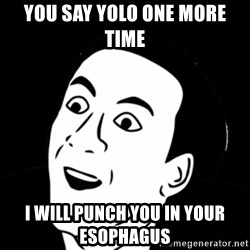 you don't say meme - YOU SAY YOLO ONE MORE TIME  I WILL PUNCH YOU IN YOUR ESOPHAGUS