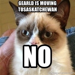 Grumpy Cat  - gearld is moving tosaskatchewan no