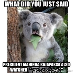 "surprised koala - what did you just said  president mahinda rajapaksa also watched   "" සුජාතා දියණි """