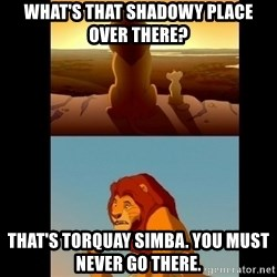 Lion King Shadowy Place - What's that shadowy place over there? that's torquay simba. you must never go there.