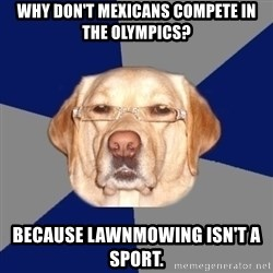 Racist Dawg - Why don't mexicans compete in the olympics? Because lawnmowing isn't a sport.
