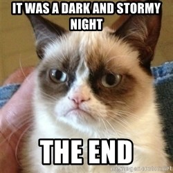 Grumpy Cat  - it was a dark and stormy night the end
